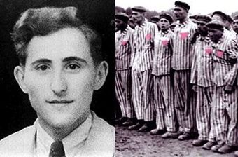 best of In holocaust Gays the