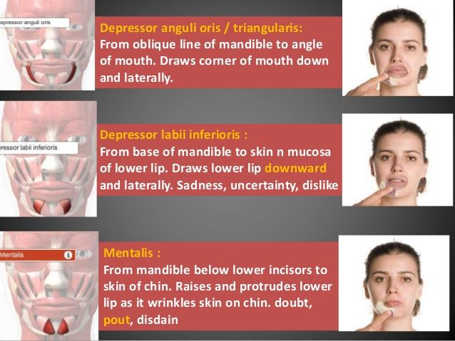best of Expression caused supercilii Facial by corrugator