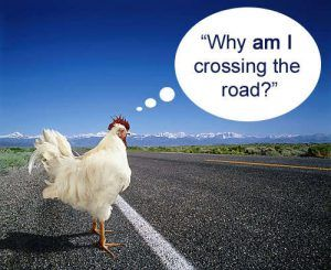 best of Hemingway the cross jokes road Why the did chicken